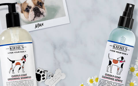 Gifts for Pets PLP Banner
